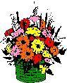 Combinar las flores y las plantas es indispensable en la decoración del living
