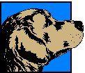 Cuidados en el perro de edad:  artritis