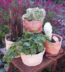 Trucos para macetas y jardineras