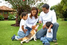 ¿Quién debe cuidar al perro de la familia?