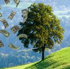 Cómo manejar el dinero en 10 pasos
