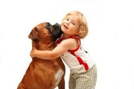 Tenencia responsable de tu mascota