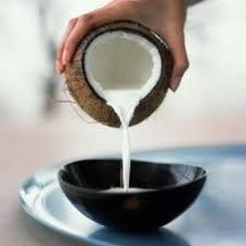 Dieta de leche de coco