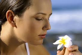 La dieta de la aromaterapia