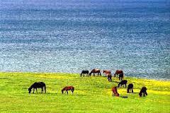 Mongolia, el lugar ideal para aficionados a la naturaleza