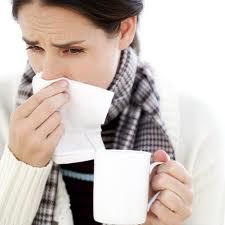 Dieta contra la gripe