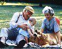 Los animales de compañía como moduladores positivos de la salud de los mayores