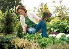 10 trucos para facilitar la jardinería