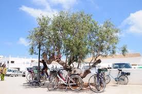 Formentera, la isla más virgen