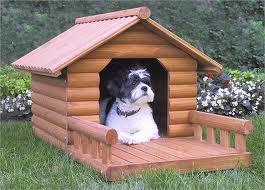 Los perros:¿dentro o fuera de la casa?