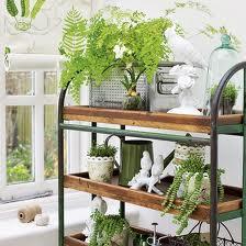 Cómo tener un jardín en un departamento pequeño