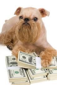 Cómo ahorrar dinero cuando se tiene una mascota