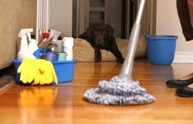 Cómo hacer una limpieza express