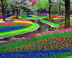 Keukenhof, los jardines más bellos de Holanda
