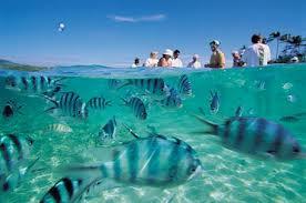 Islas Fiji, un paraíso en el Pacífico Sur