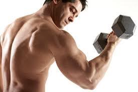Ejercicios para fortalecer los brazos