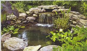 Cómo tener un jardín que relaja y tranquiliza