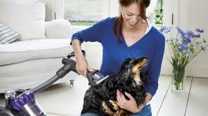 Cómo evitar la caída de pelo en los perros