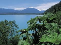 Postales de la Patagonia en el paralelo 42