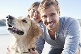 Adoptar un perro en pareja: 15 preguntas antes de decidir