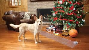 Cómo hacer un árbol de Navidad a prueba de mascotas