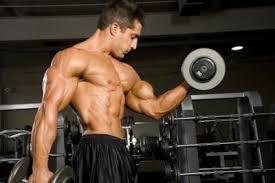 Cómo desarrollar los bíceps rápidamente