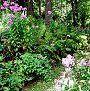 Su propio abono orgánico para el jardín