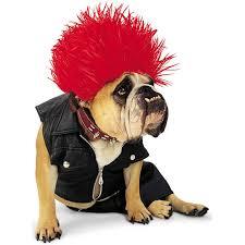 4 ideas de disfraces para perros