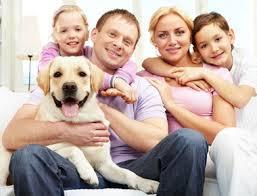 Perros en la familia