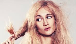 ¿Cómo recuperar tu cabello maltratado?