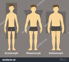 ¿Qué tipo de cuerpo tienes?