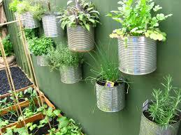 ¿Como diseñar un jardín?