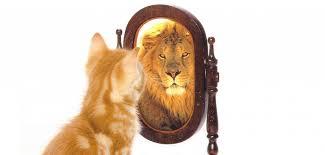 Autoestima positiva en 15 pasos