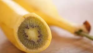 ¿Qué pasa si plantamos un kiwi con un plátano?