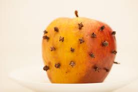 ¿Cómo eliminar las moscas para siempre?