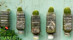 ¿Cómo hacer un muro de pets?