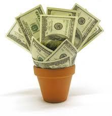 10 opciones para ganar dinero con tu jardín