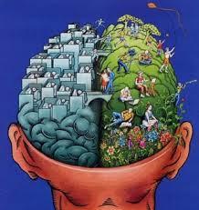 Test para conocer tu hemisferio dominante