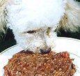 Alimentos para perros...todo lo que se debe saber