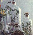 La homeopatía  y la fitoterapia frente a la muerte