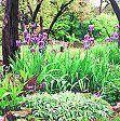 El jardín, un excelente espacio para compartir el tiempo con un niño