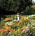 Los cinco principios básicos en la decoración de un jardín