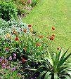 Como mantener en orden su jardín sin mayor esfuerzo
