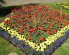 Jardín en flor, todos los meses del año