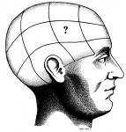 ¿Rejuvenece el cerebro?